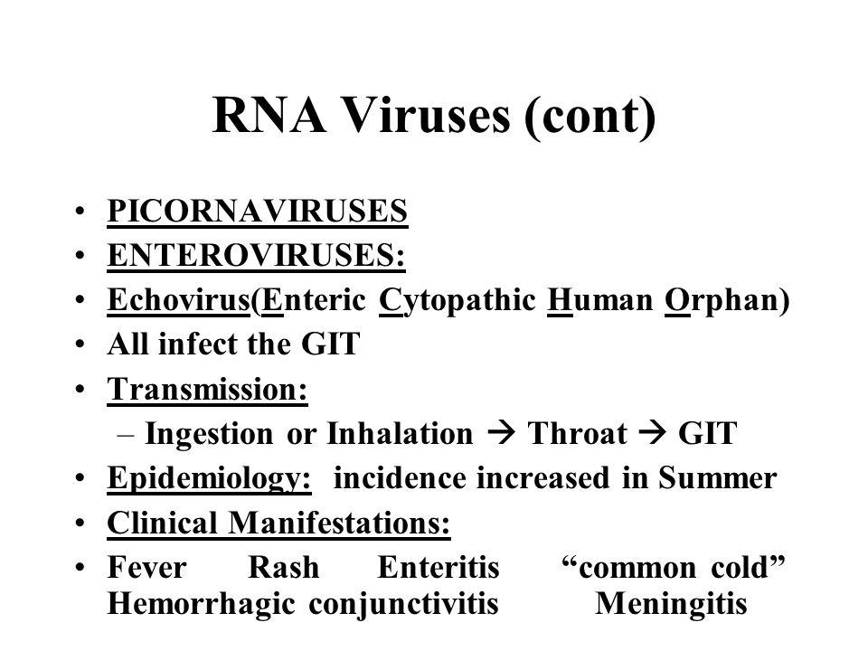 RNA Viruses (cont) PICORNAVIRUSES ENTEROVIRUSES: Echovirus(Enteric Cytopathic Human Orphan) All infect the GIT Transmission: –Ingestion or Inhalation