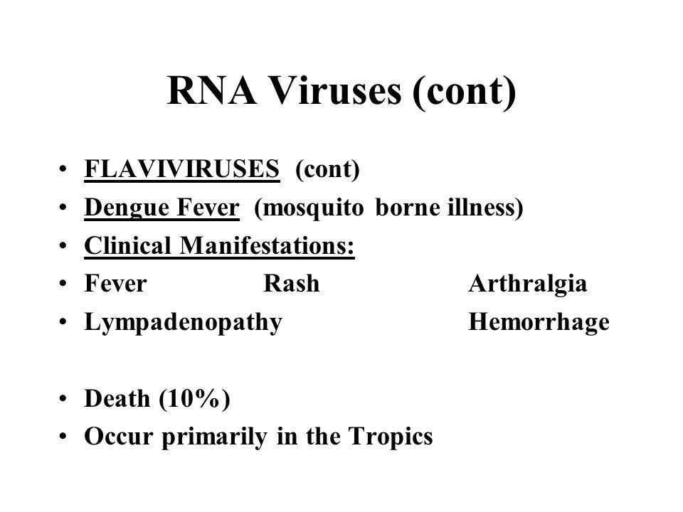 RNA Viruses (cont) FLAVIVIRUSES (cont) Dengue Fever (mosquito borne illness) Clinical Manifestations: Fever RashArthralgia Lympadenopathy Hemorrhage D