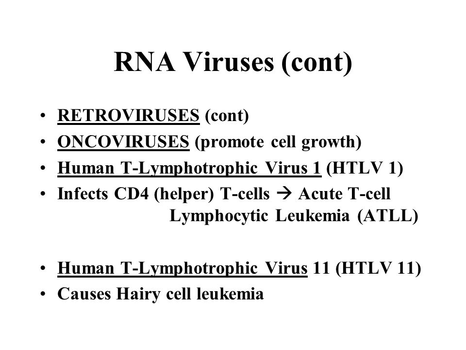 RNA Viruses (cont) RETROVIRUSES (cont) ONCOVIRUSES (promote cell growth) Human T-Lymphotrophic Virus 1 (HTLV 1) Infects CD4 (helper) T-cells  Acute T