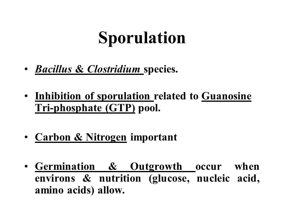 Sporulation Bacillus & Clostridium species. Inhibition of sporulation related to Guanosine Tri-phosphate (GTP) pool. Carbon & Nitrogen important Germi