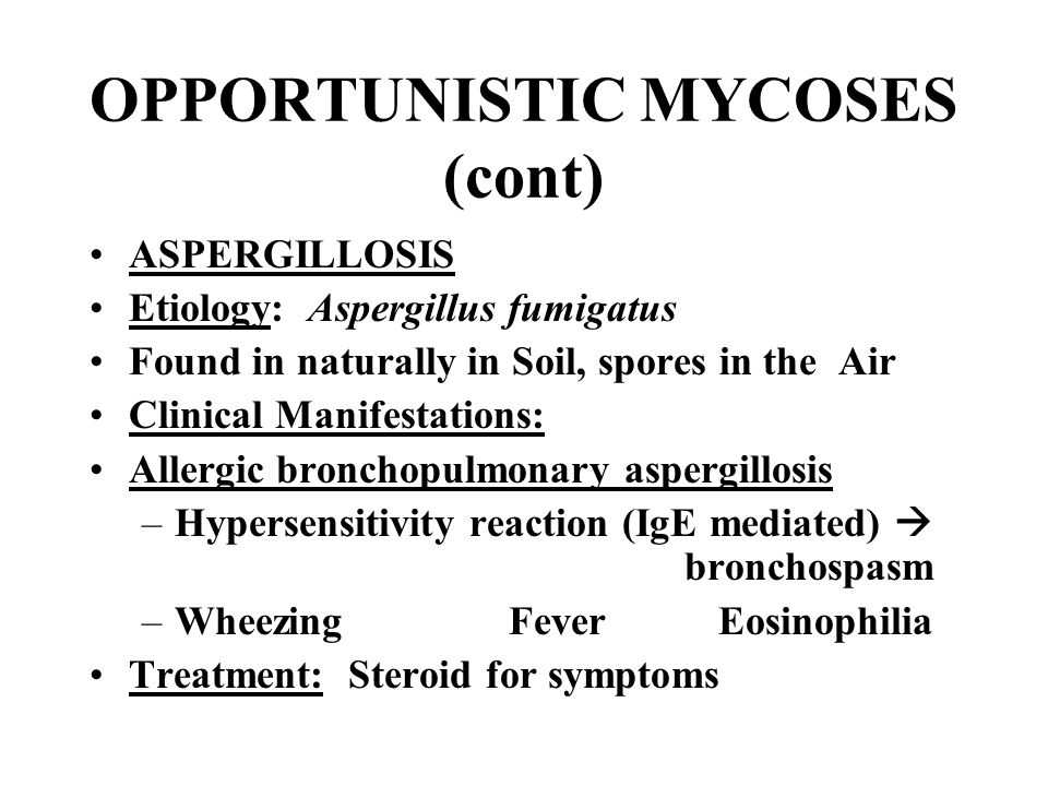 OPPORTUNISTIC MYCOSES (cont) ASPERGILLOSIS Etiology: Aspergillus fumigatus Found in naturally in Soil, spores in the Air Clinical Manifestations: Alle