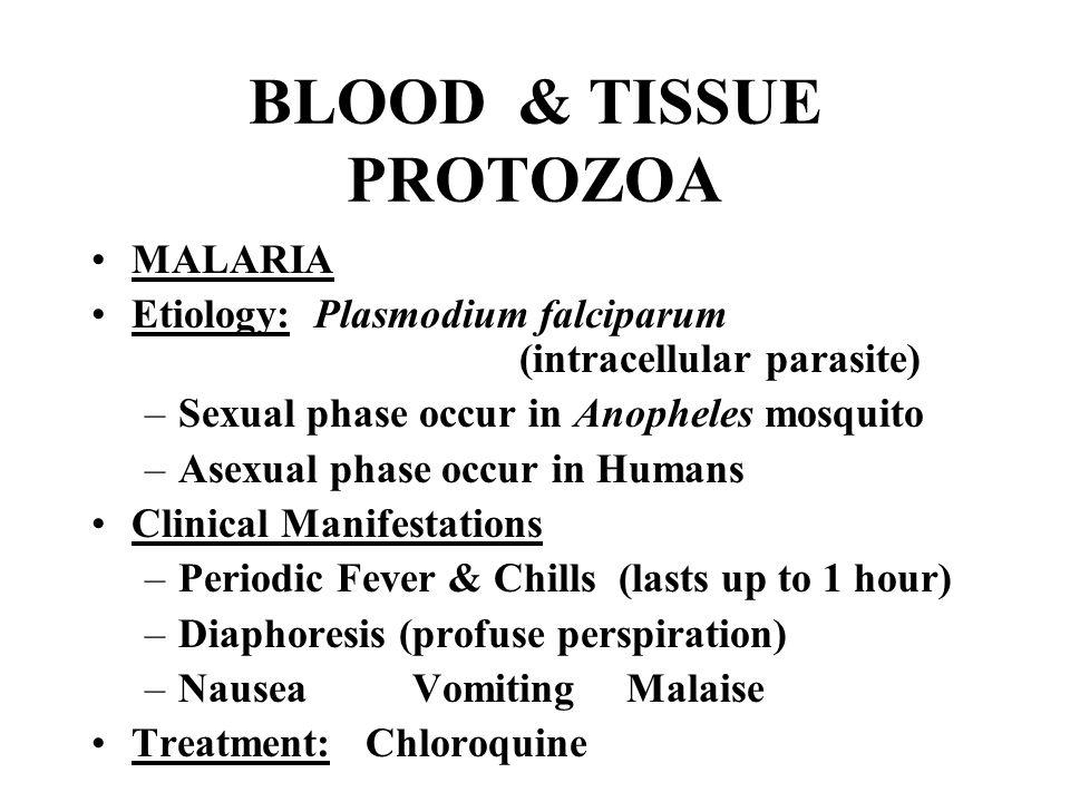 BLOOD & TISSUE PROTOZOA MALARIA Etiology: Plasmodium falciparum (intracellular parasite) –Sexual phase occur in Anopheles mosquito –Asexual phase occu