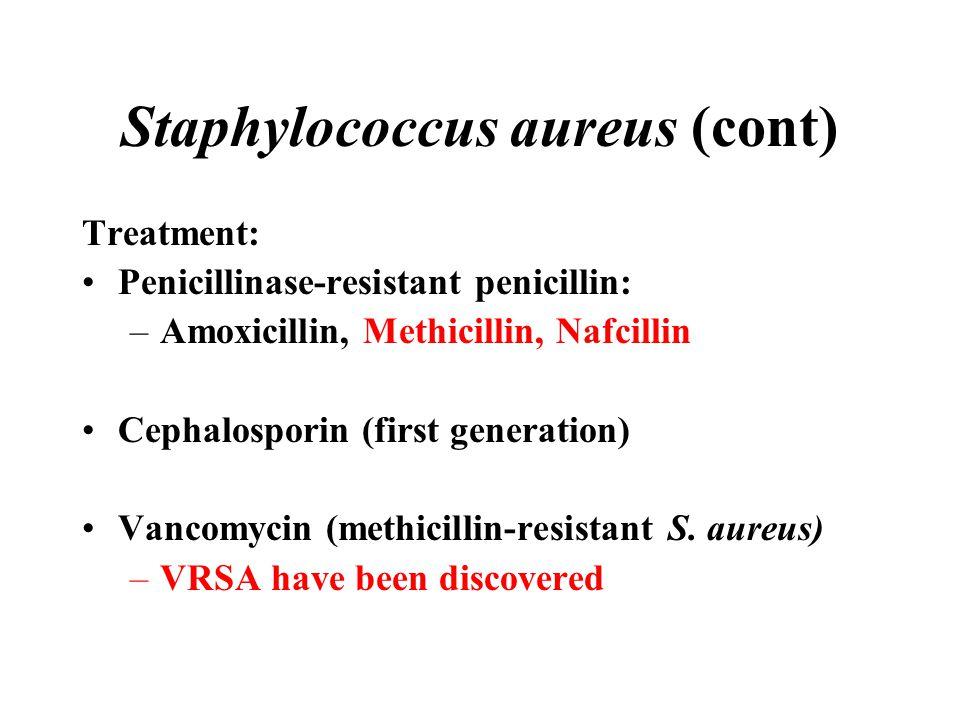 Staphylococcus aureus (cont) Treatment: Penicillinase-resistant penicillin: –Amoxicillin, Methicillin, Nafcillin Cephalosporin (first generation) Vanc