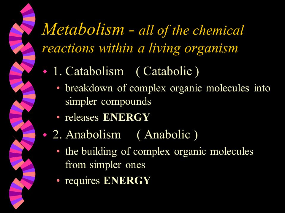 Metabolism - all of the chemical reactions within a living organism w 1.