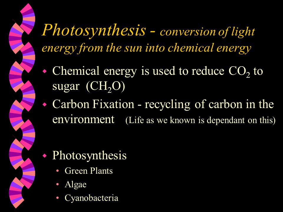 Photosynthesis - conversion of light energy from the sun into chemical energy w Chemical energy is used to reduce CO 2 to sugar (CH 2 O) w Carbon Fixation - recycling of carbon in the environment (Life as we known is dependant on this) w Photosynthesis Green Plants Algae Cyanobacteria