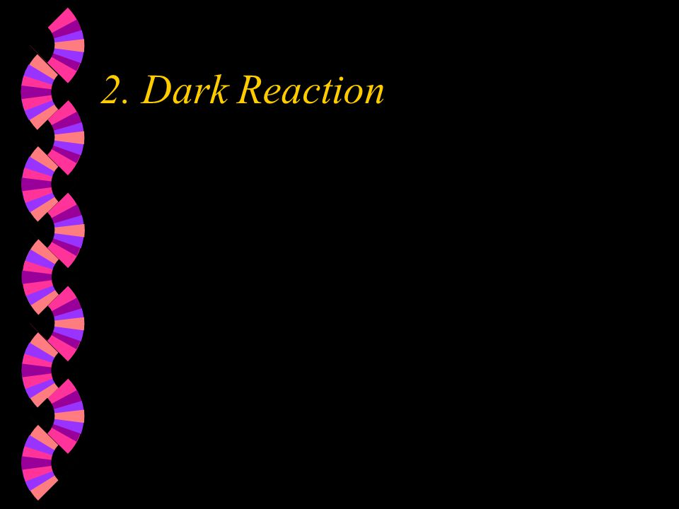 2. Dark Reaction