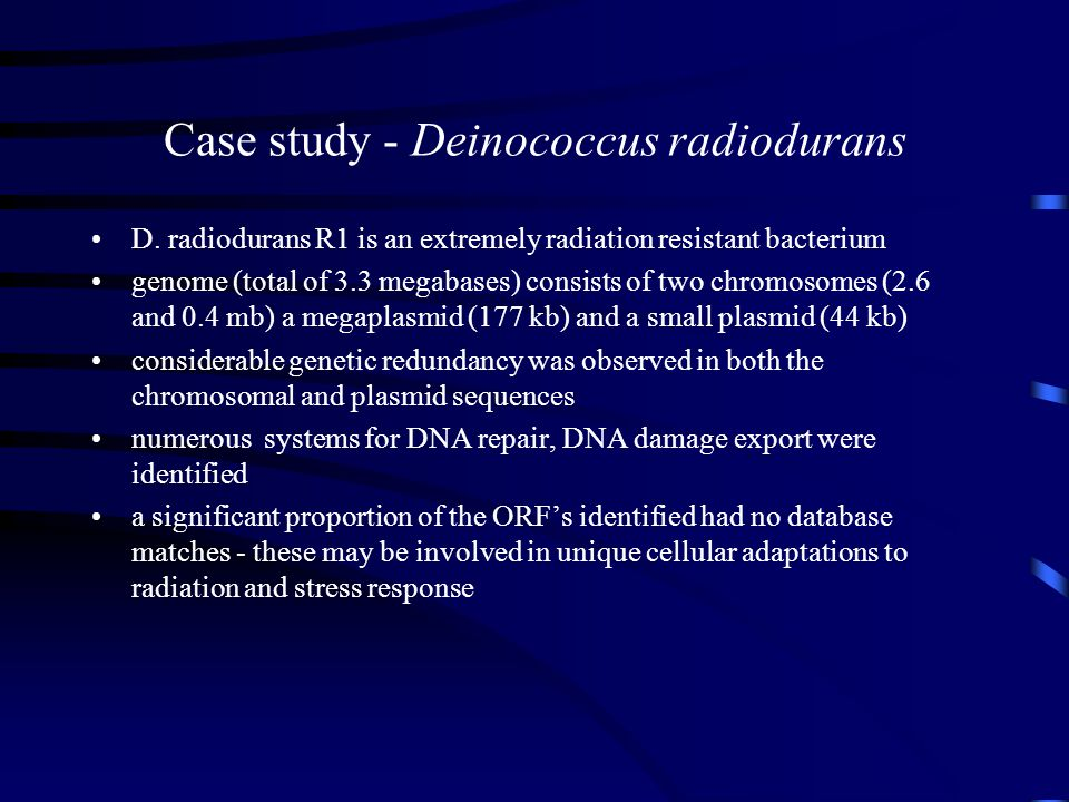 Case study - Deinococcus radiodurans D. radiodurans R1 is an extremely radiation resistant bacterium genome (total of 3.3 megabases) consists of two c
