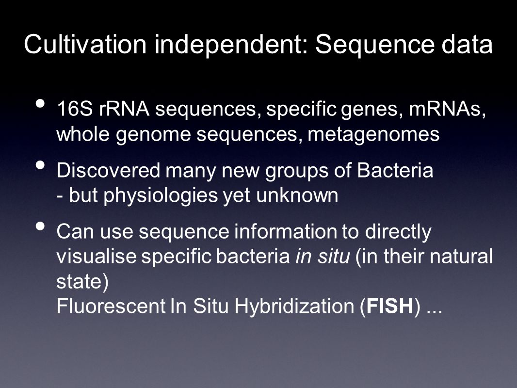 Cultivation independent: Sequence data 16S rRNA sequences, specific genes, mRNAs, whole genome sequences, metagenomes Discovered many new groups of Bacteria - but physiologies yet unknown Can use sequence information to directly visualise specific bacteria in situ (in their natural state) Fluorescent In Situ Hybridization (FISH)...