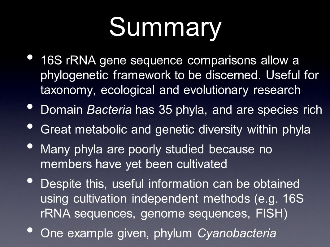 Summary 16S rRNA gene sequence comparisons allow a phylogenetic framework to be discerned.