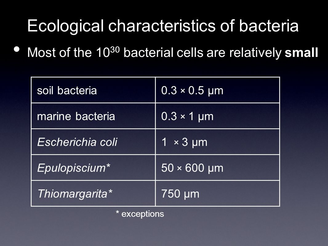 Ecological characteristics of bacteria Most of the 10 30 bacterial cells are relatively small * exceptions soil bacteria0.3 × 0.5 µm marine bacteria0.3 × 1 µm Escherichia coli1 × 3 µm Epulopiscium*50 × 600 µm Thiomargarita*750 µm