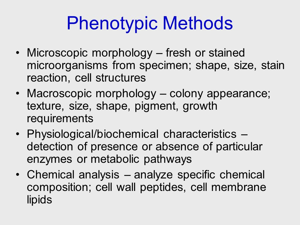 Phenotypic Methods Microscopic morphology – fresh or stained microorganisms from specimen; shape, size, stain reaction, cell structures Macroscopic morphology – colony appearance; texture, size, shape, pigment, growth requirements Physiological/biochemical characteristics – detection of presence or absence of particular enzymes or metabolic pathways Chemical analysis – analyze specific chemical composition; cell wall peptides, cell membrane lipids