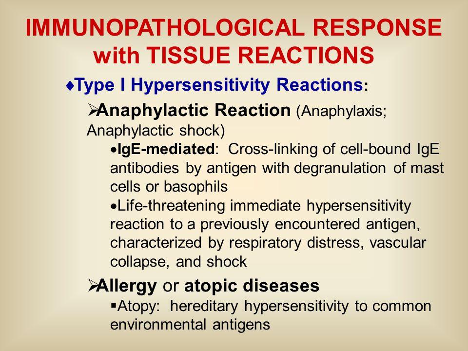 IMMUNOPATHOLOGICAL RESPONSE with TISSUE REACTIONS  Type I Hypersensitivity Reactions :  Anaphylactic Reaction (Anaphylaxis; Anaphylactic shock)  Ig