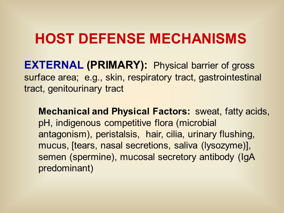 HOST DEFENSE MECHANISMS EXTERNAL (PRIMARY): Physical barrier of gross surface area; e.g., skin, respiratory tract, gastrointestinal tract, genitourinary tract Mechanical and Physical Factors: sweat, fatty acids, pH, indigenous competitive flora (microbial antagonism), peristalsis, hair, cilia, urinary flushing, mucus, [tears, nasal secretions, saliva (lysozyme)], semen (spermine), mucosal secretory antibody (IgA predominant)