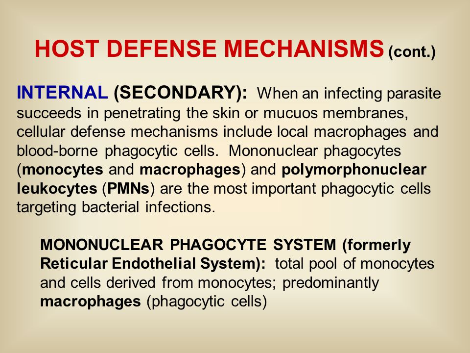 HOST DEFENSE MECHANISMS (cont.) INTERNAL (SECONDARY): When an infecting parasite succeeds in penetrating the skin or mucuos membranes, cellular defense mechanisms include local macrophages and blood-borne phagocytic cells.