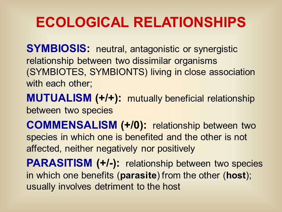 ECOLOGICAL RELATIONSHIPS SYMBIOSIS: neutral, antagonistic or synergistic relationship between two dissimilar organisms (SYMBIOTES, SYMBIONTS) living i