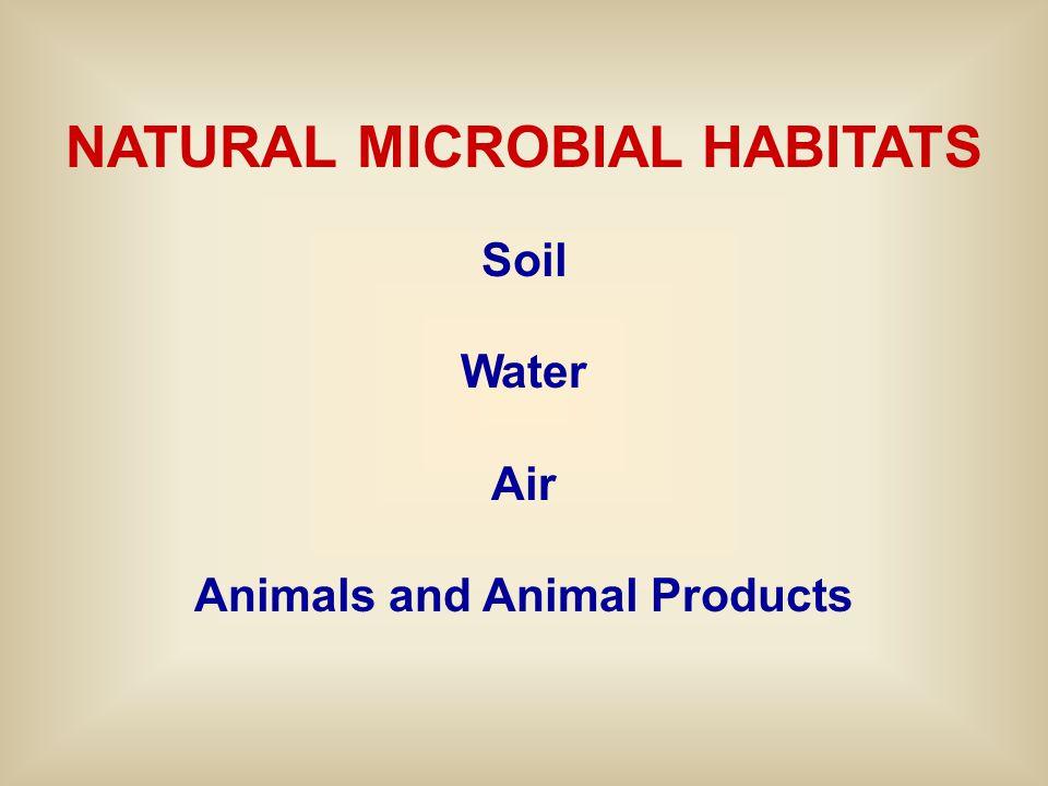 NATURAL MICROBIAL HABITATS Soil Water Air Animals and Animal Products