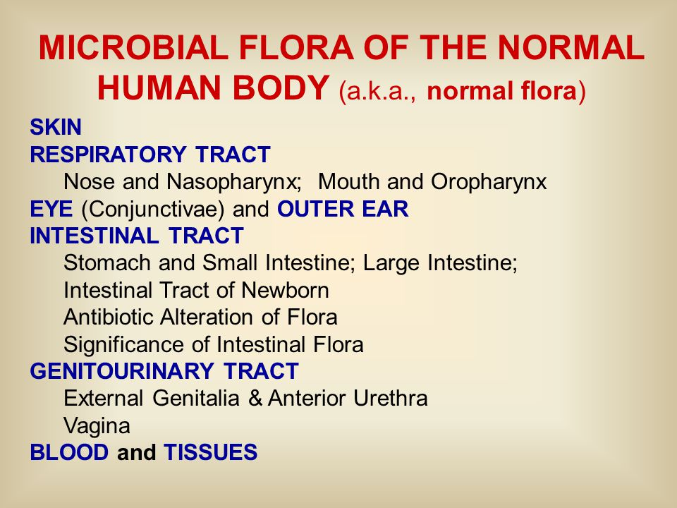 MICROBIAL FLORA OF THE NORMAL HUMAN BODY (a.k.a., normal flora) SKIN RESPIRATORY TRACT Nose and Nasopharynx; Mouth and Oropharynx EYE (Conjunctivae) a