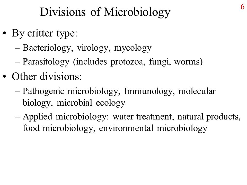6 Divisions of Microbiology By critter type: –Bacteriology, virology, mycology –Parasitology (includes protozoa, fungi, worms) Other divisions: –Pathogenic microbiology, Immunology, molecular biology, microbial ecology –Applied microbiology: water treatment, natural products, food microbiology, environmental microbiology