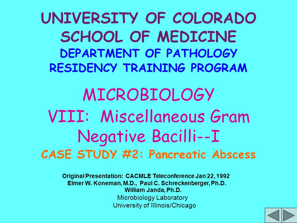 UNIVERSITY OF COLORADO SCHOOL OF MEDICINE DEPARTMENT OF PATHOLOGY RESIDENCY TRAINING PROGRAM MICROBIOLOGY VIII: Miscellaneous Gram Negative Bacilli--I