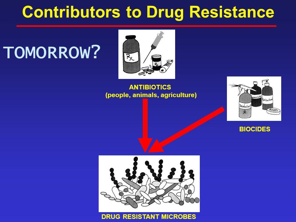 Contributors to Drug Resistance ANTIBIOTICS (people, animals, agriculture) DRUG RESISTANT MICROBES BIOCIDES TOMORROW