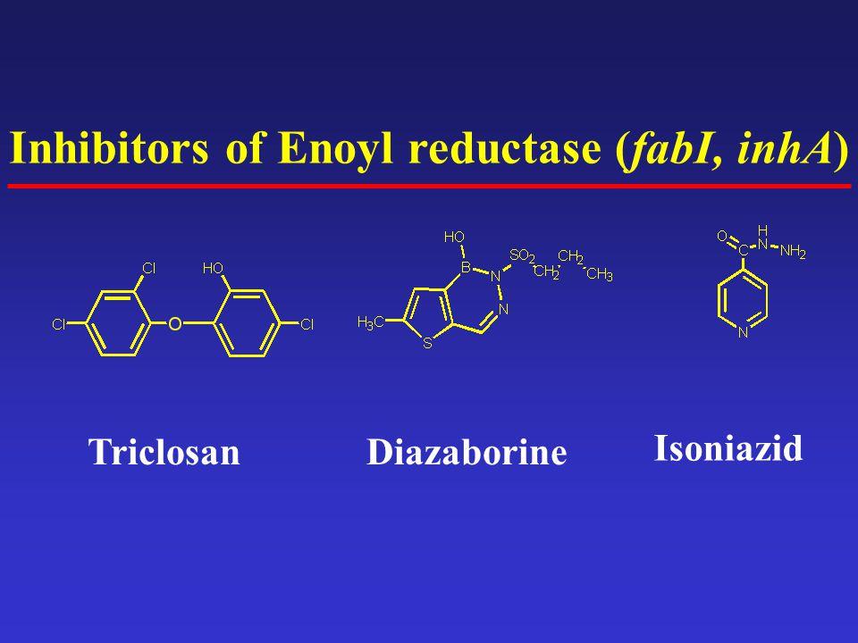 Inhibitors of Enoyl reductase (fabI, inhA) TriclosanDiazaborine Isoniazid