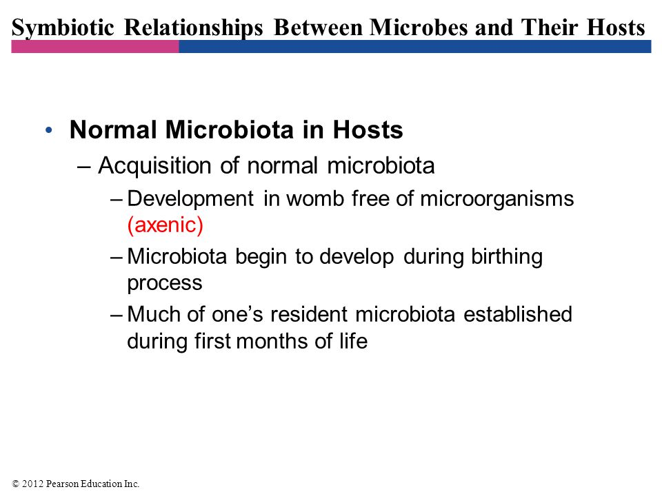 Symbiotic Relationships Between Microbes and Their Hosts Normal Microbiota in Hosts –Acquisition of normal microbiota –Development in womb free of mic