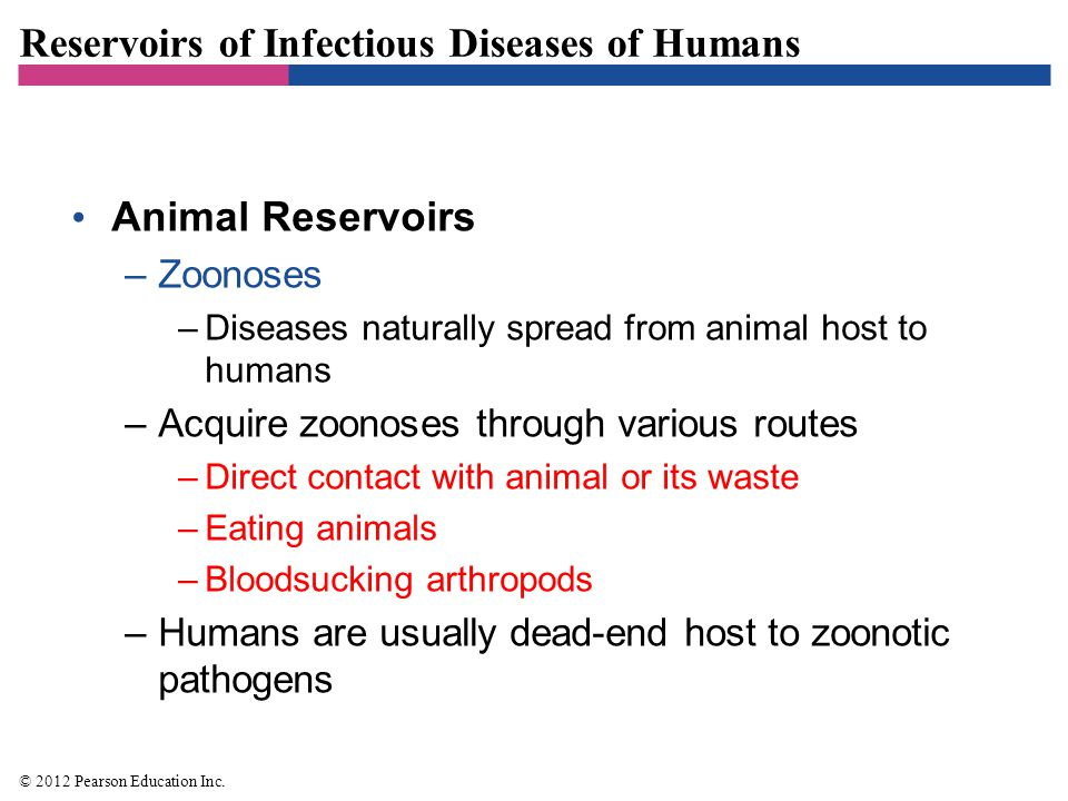 Reservoirs of Infectious Diseases of Humans Animal Reservoirs –Zoonoses –Diseases naturally spread from animal host to humans –Acquire zoonoses throug
