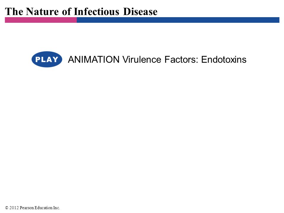 The Nature of Infectious Disease © 2012 Pearson Education Inc. ANIMATION Virulence Factors: Endotoxins