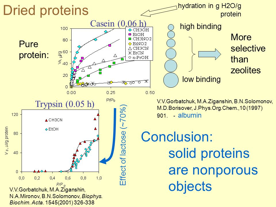 Protein Isotherms Dried proteins hydration in g H2O/g protein high binding low binding More selective than zeolites V.V.Gorbatchuk, M.A.Ziganshin, B.N