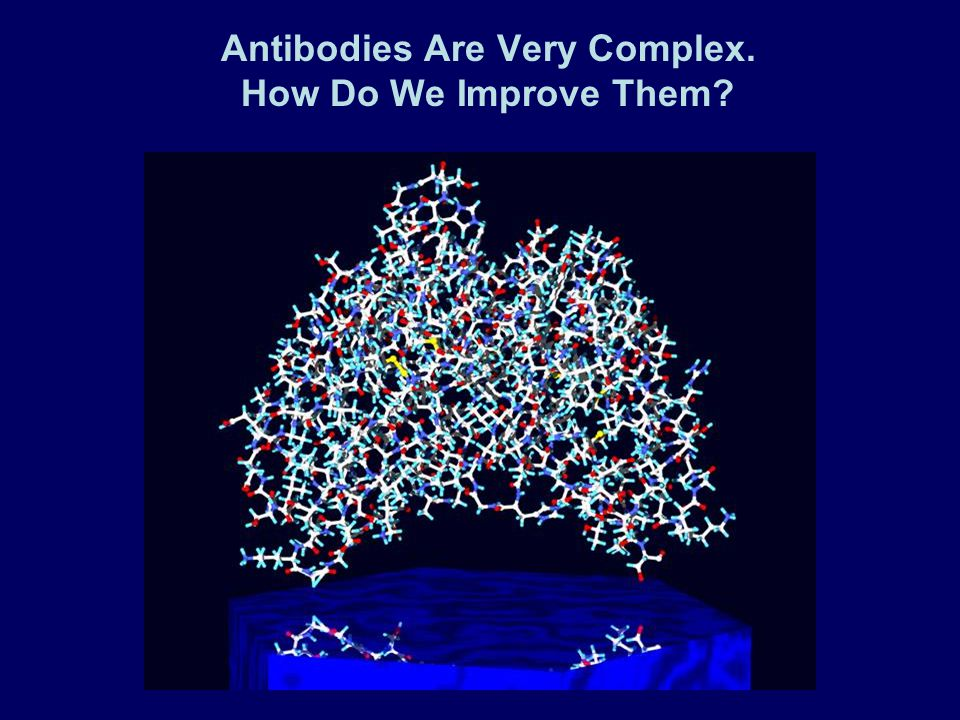 Antibodies Are Very Complex. How Do We Improve Them?