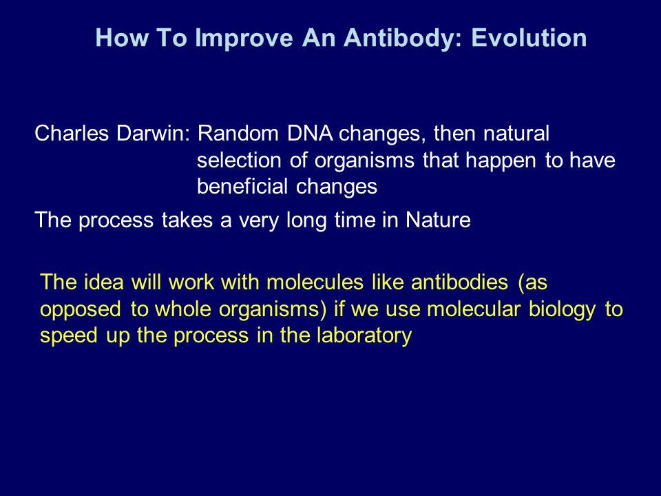 How To Improve An Antibody: Evolution Charles Darwin: Random DNA changes, then natural selection of organisms that happen to have beneficial changes T