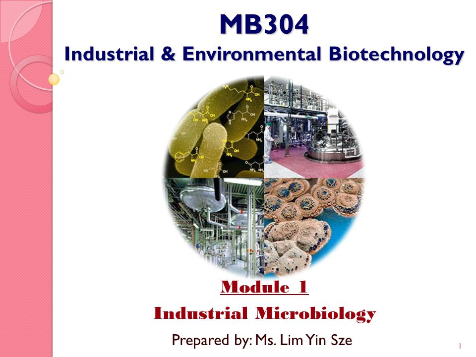 MB304 Industrial & Environmental Biotechnology Module 1 Industrial Microbiology 1 Prepared by: Ms. Lim Yin Sze