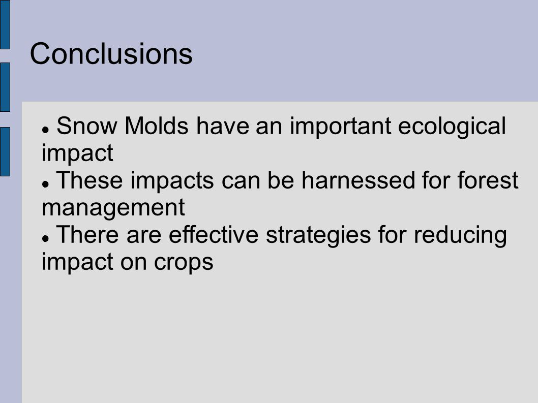 Conclusions Snow Molds have an important ecological impact These impacts can be harnessed for forest management There are effective strategies for reducing impact on crops