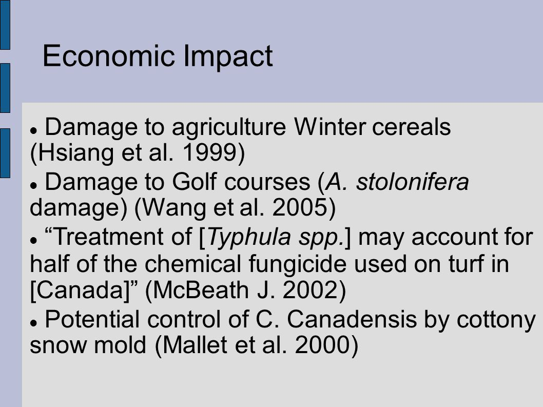 Economic Impact Damage to agriculture Winter cereals (Hsiang et al.