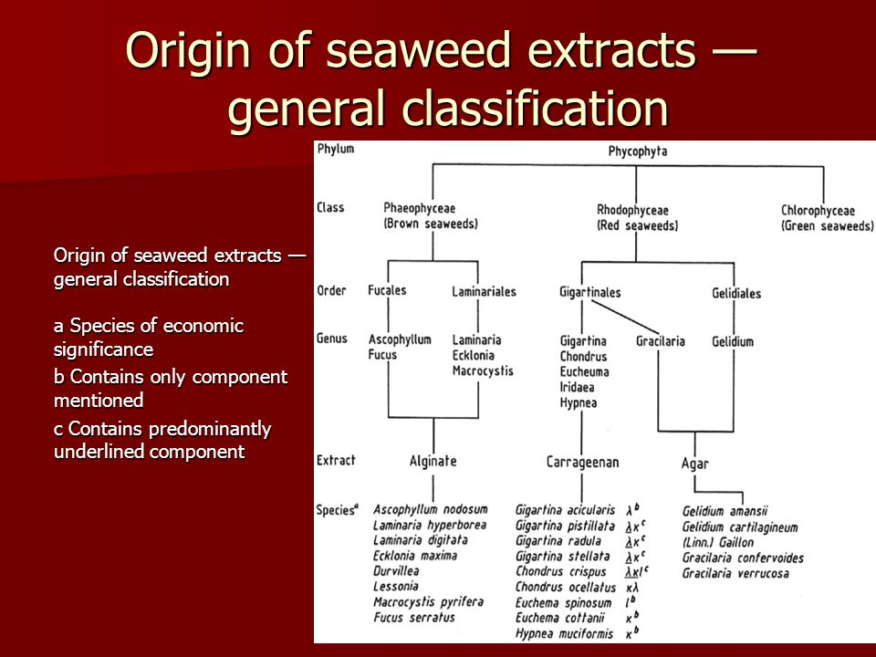 Origin of seaweed extracts — general classification Origin of seaweed extracts — general classification a Species of economic significance b Contains only component mentioned c Contains predominantly underlined component