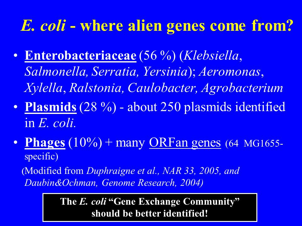 E. coli - where alien genes come from? Enterobacteriaceae (56 %) (Klebsiella, Salmonella, Serratia, Yersinia); Aeromonas, Xylella, Ralstonia, Caulobac