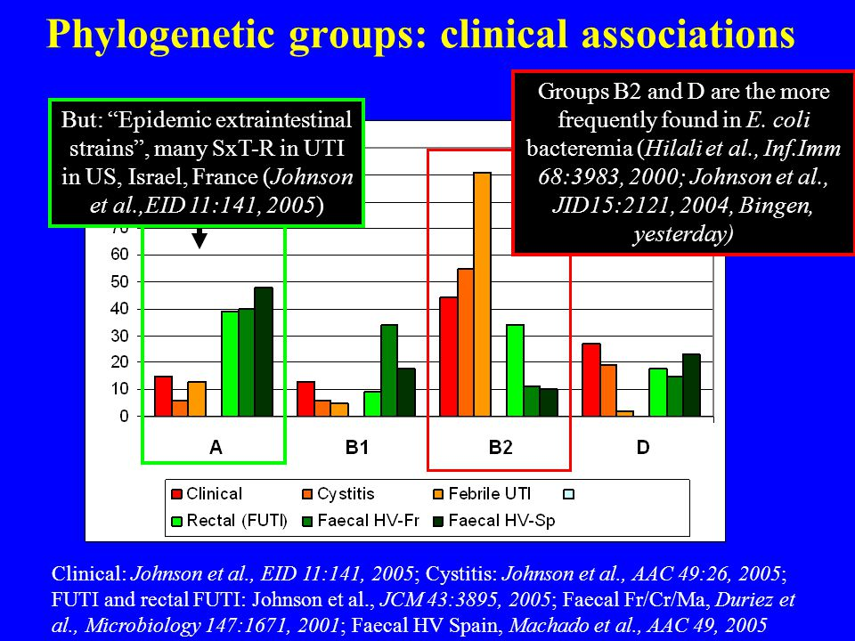 Phylogenetic groups: clinical associations Clinical: Johnson et al., EID 11:141, 2005; Cystitis: Johnson et al., AAC 49:26, 2005; FUTI and rectal FUTI