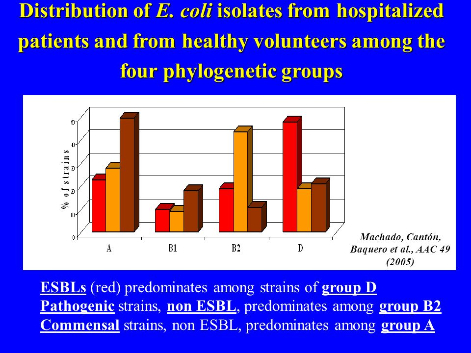 Distribution of E. coli isolates from hospitalized patients and from healthy volunteers among the four phylogenetic groups ESBLs (red) predominates am