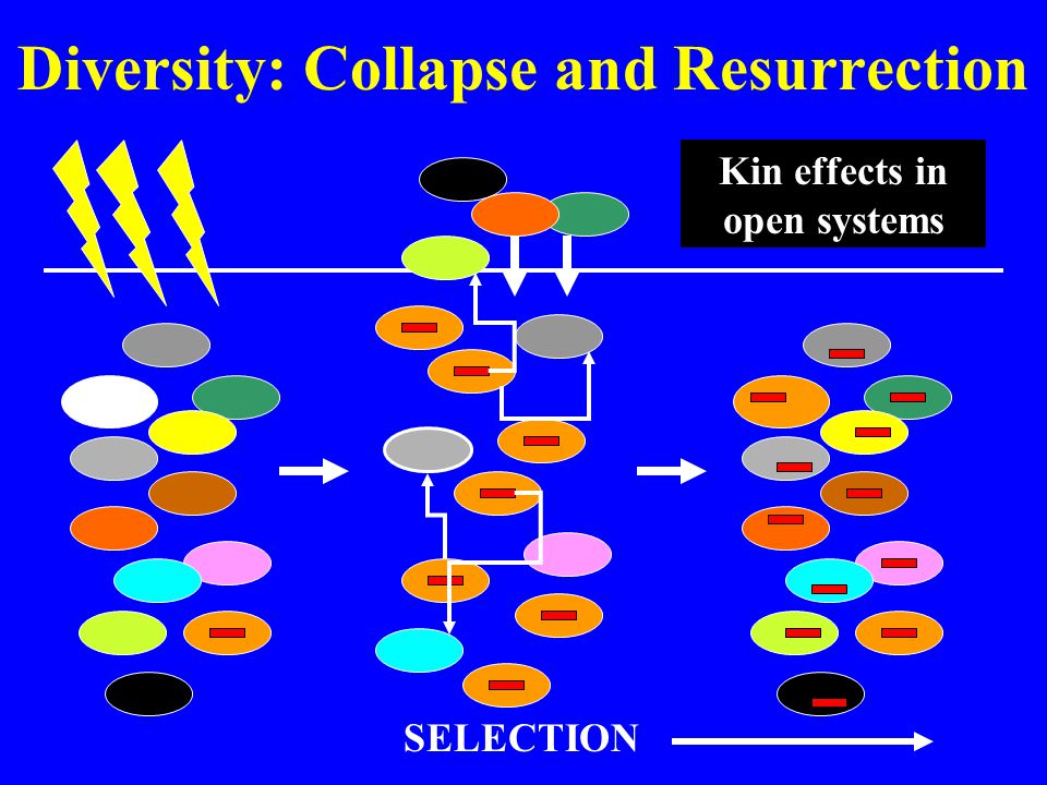 Diversity: Collapse and Resurrection SELECTION Kin effects in open systems