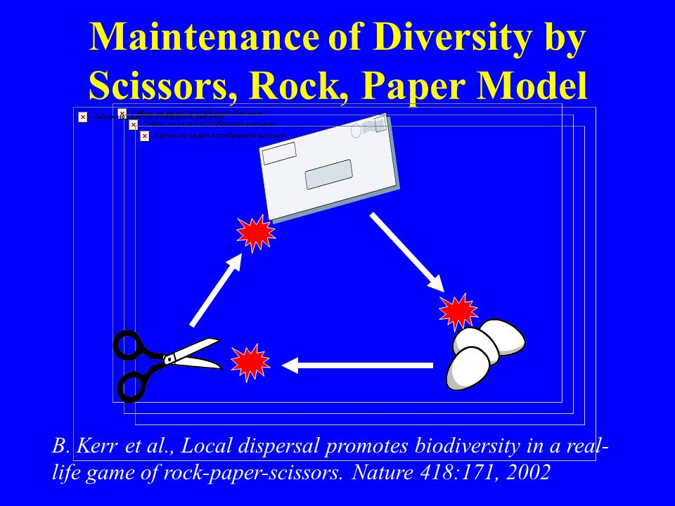 Maintenance of Diversity by Scissors, Rock, Paper Model B. Kerr et al., Local dispersal promotes biodiversity in a real- life game of rock-paper-sciss