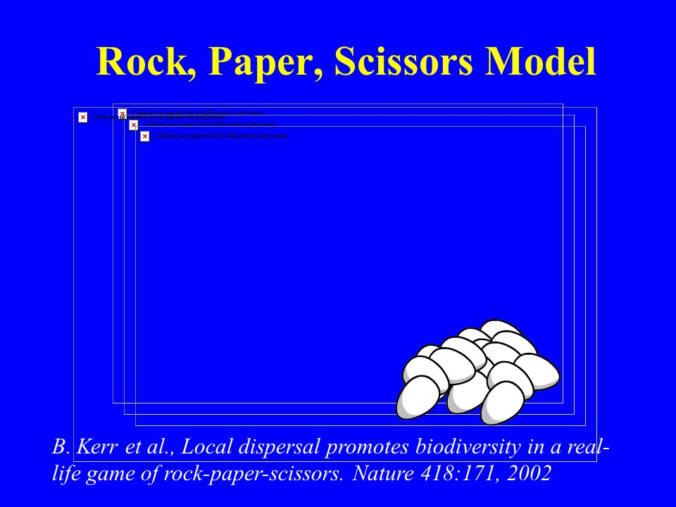 B. Kerr et al., Local dispersal promotes biodiversity in a real- life game of rock-paper-scissors. Nature 418:171, 2002 Rock, Paper, Scissors Model