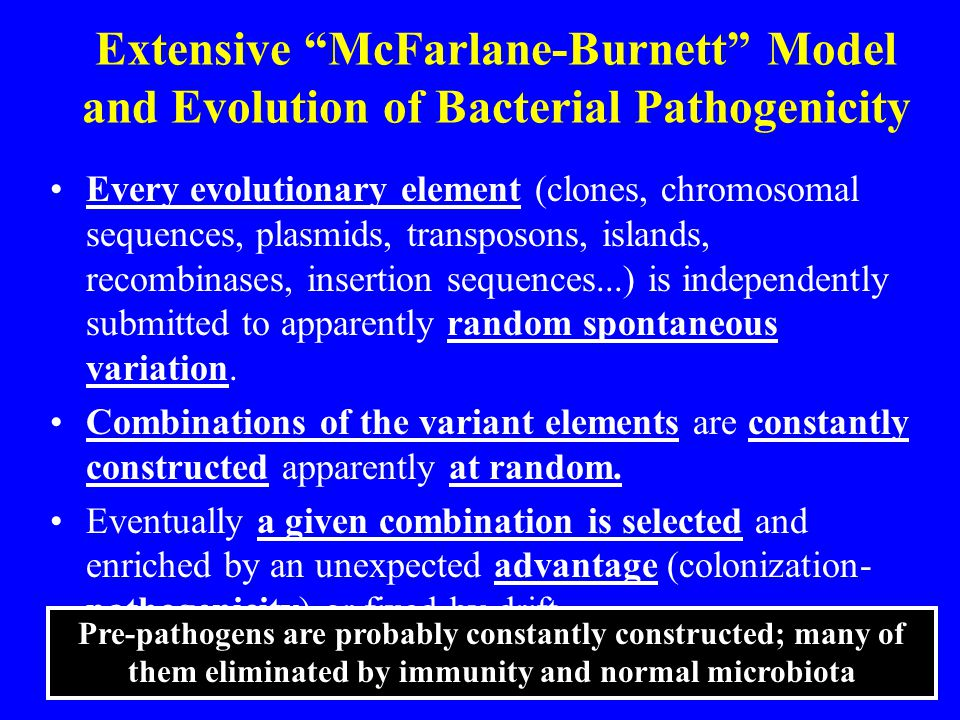 "Extensive ""McFarlane-Burnett"" Model and Evolution of Bacterial Pathogenicity Every evolutionary element (clones, chromosomal sequences, plasmids, tran"