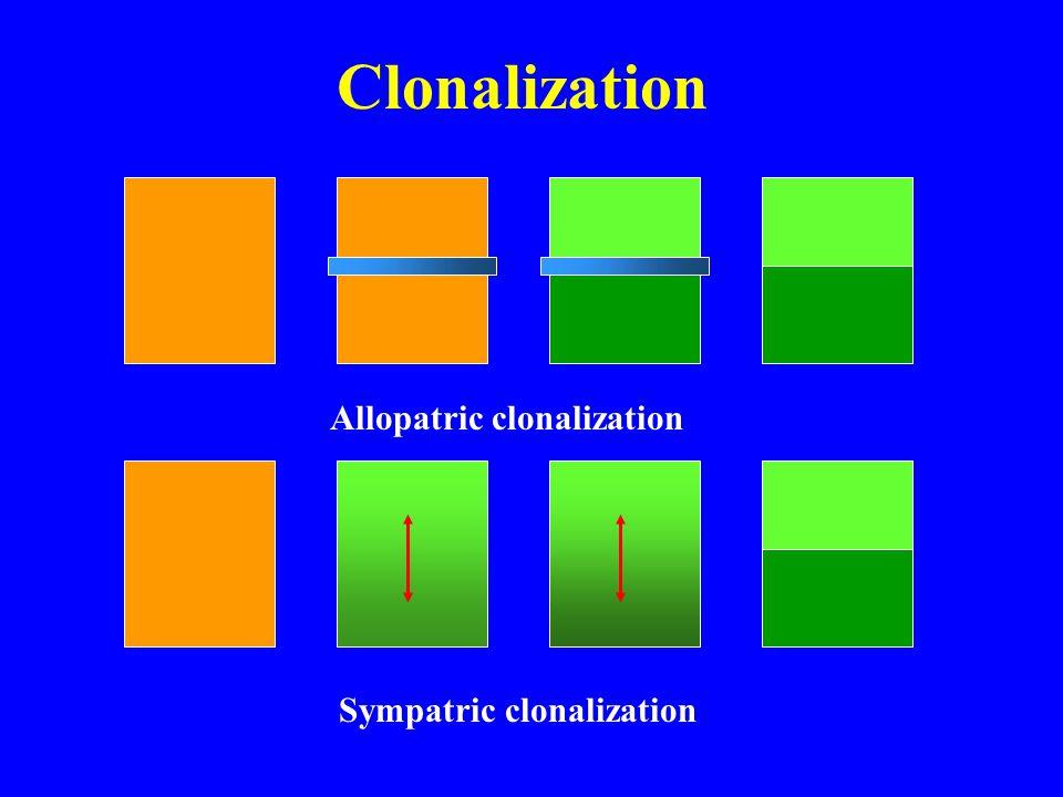 Clonalization Allopatric clonalization Sympatric clonalization