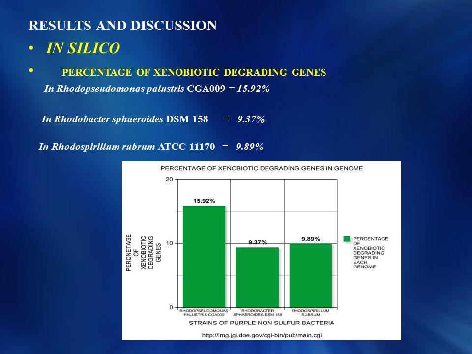 RESULTS AND DISCUSSION IN SILICO PERCENTAGE OF XENOBIOTIC DEGRADING GENES In Rhodopseudomonas palustris CGA009 = 15.92% In Rhodobacter sphaeroides DSM 158 = 9.37% In Rhodospirillum rubrum ATCC 11170 = 9.89%