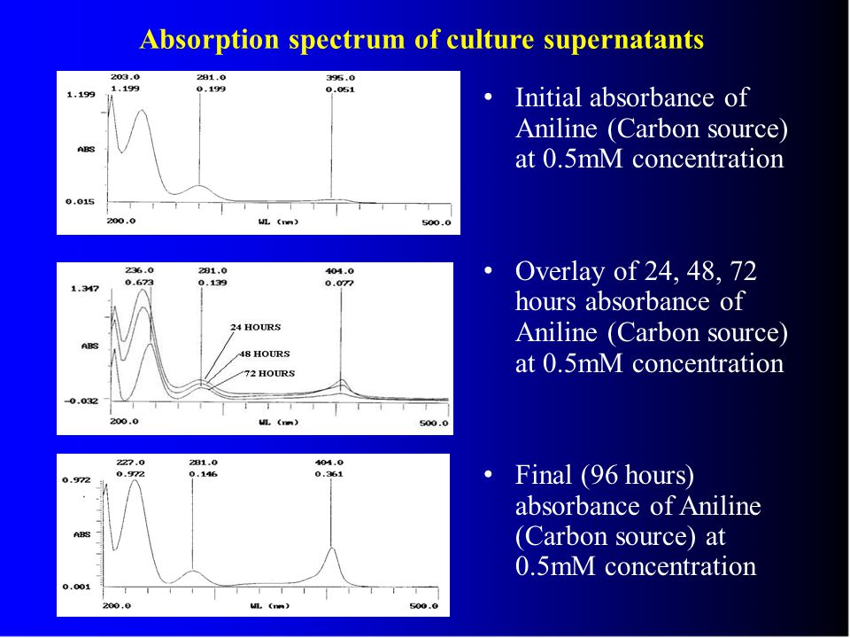 Absorption spectrum of culture supernatants Initial absorbance of Aniline (Carbon source) at 0.5mM concentration Overlay of 24, 48, 72 hours absorbance of Aniline (Carbon source) at 0.5mM concentration Final (96 hours) absorbance of Aniline (Carbon source) at 0.5mM concentration