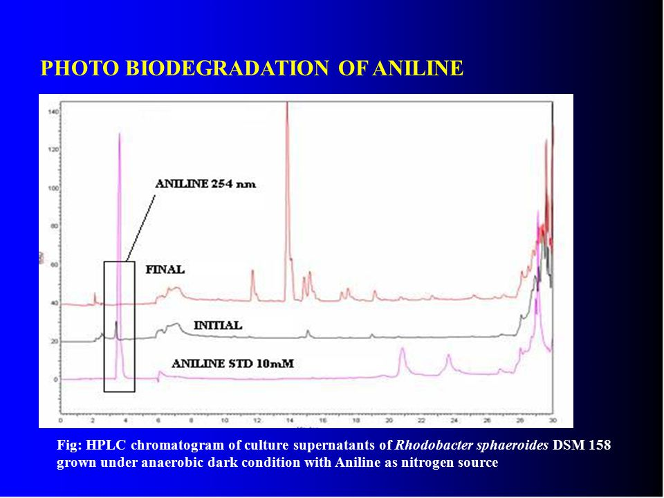 PHOTO BIODEGRADATION OF ANILINE Fig: HPLC chromatogram of culture supernatants of Rhodobacter sphaeroides DSM 158 grown under anaerobic dark condition with Aniline as nitrogen source