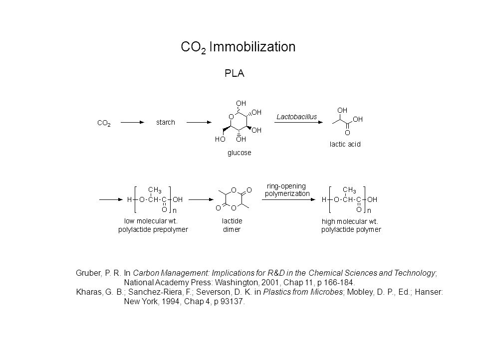 CO 2 Immobilization PLA Gruber, P. R.