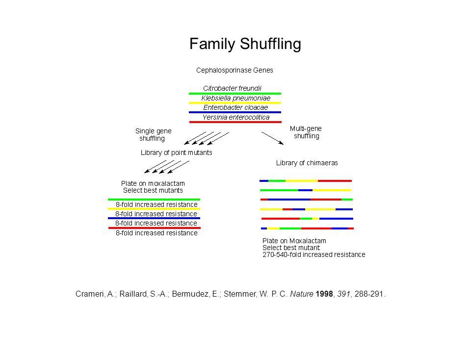 Family Shuffling Crameri, A.; Raillard, S.-A.; Bermudez, E.; Stemmer, W.