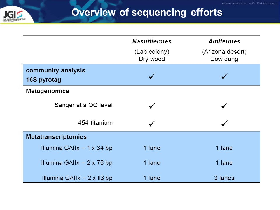 Advancing Science with DNA Sequence Overview of sequencing efforts NasutitermesAmitermes (Lab colony) Dry wood (Arizona desert) Cow dung community analysis 16S pyrotag Metagenomics Sanger at a QC level 454-titanium Metatranscriptomics Illumina GAIIx – 1 x 34 bp Illumina GAIIx – 2 x 76 bp Illumina GAIIx – 2 x ll3 bp 1 lane 3 lanes