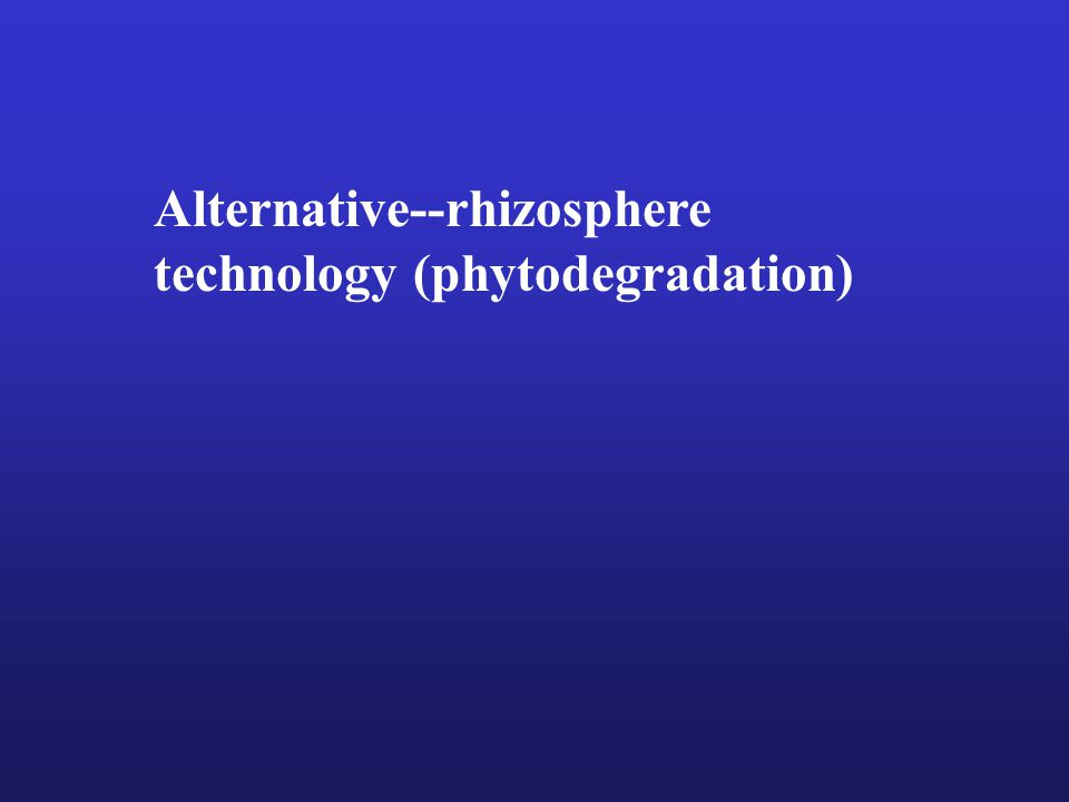 Alternative--rhizosphere technology (phytodegradation)